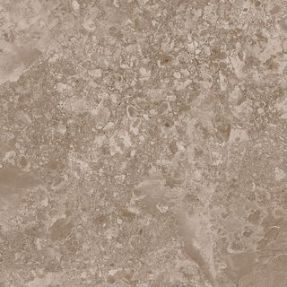 SOLTO TAUPE/100X100/RW/R (22209)