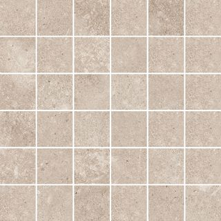 D.LENS TAUPE MOSAIC/30X30/RW (22777)