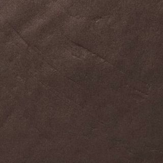 ARCH.DARK BROWN GLOSS (4996451)