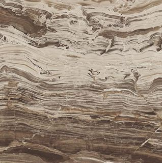 I MARMI REX MARBLE BROWN NAT.60X60 (728955_sklad)