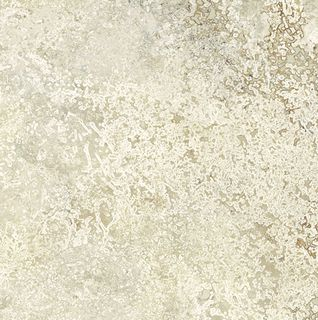 TRAVERTINO CREAM SQ. 60X60 (TX0268)